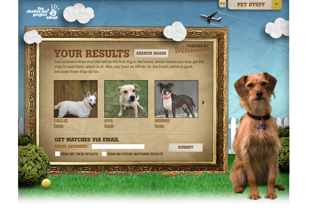 The Shelter Pet Project - Pet Personals