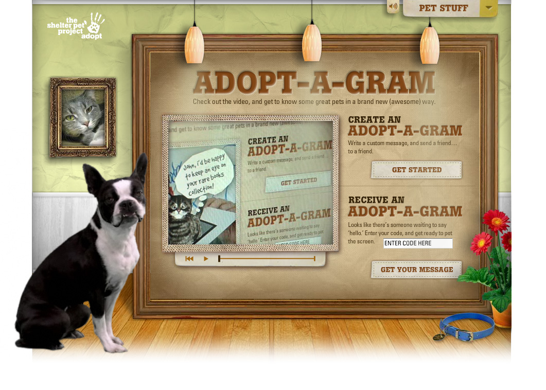 The Shelter Pet Project - Adopt-A-Gram